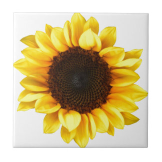 Sunny Sunflower Small Square Tile