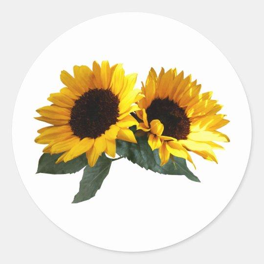 Sunny Sunflowers Classic Round Sticker