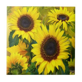 Sunny Sunflowers Tiles