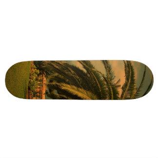 sunny Tenerife 2 Skateboard