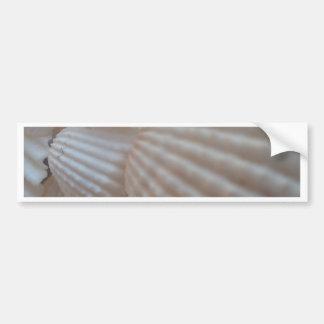 Sunny White Seashells, Sea Shell Beach Summer Love Car Bumper Sticker
