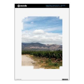 Sunny Winery iPad 3 Decals