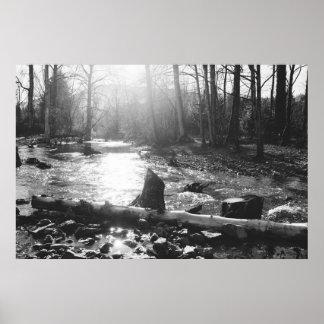 Sunny Winter Creek Poster