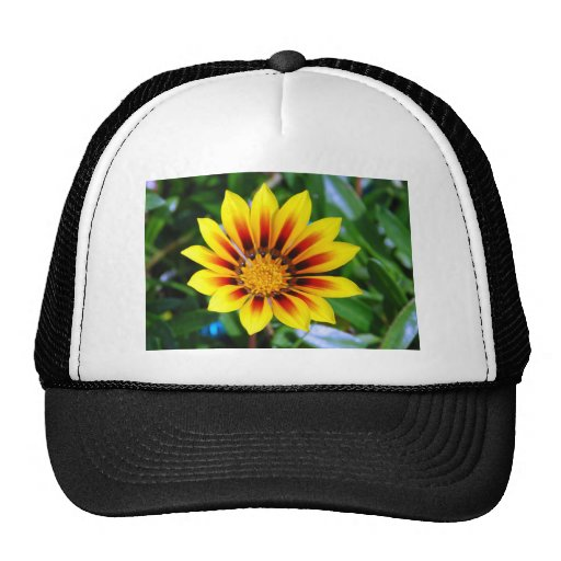 Sunny Yellow and Red Flower Blossom Trucker Hat