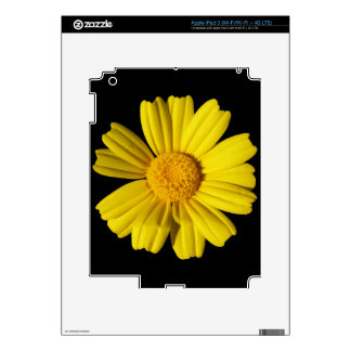 Sunny yellow chamomile decal for iPad 3
