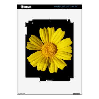 Sunny yellow chamomile decal for iPad 3