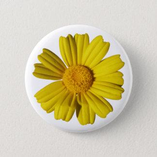 Sunny yellow chamomile pinback button