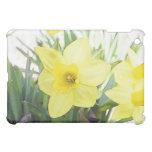 Sunny Yellow Daffodil iPad Mini Cases
