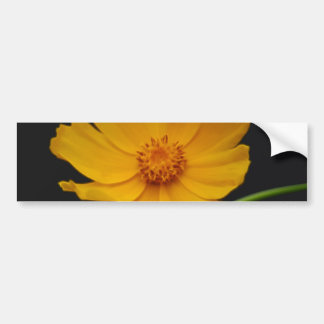 Sunny yellow flower and its meaning bumper sticker