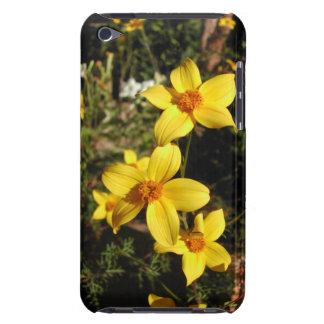 Sunny Yellow Flowers Bidens iPod Case-Mate Cases