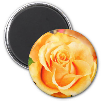 Sunny Yellow Rose in Bouquet Magnet