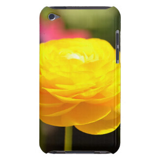 Sunny Yellow Spring Flowers iPod Touch Case