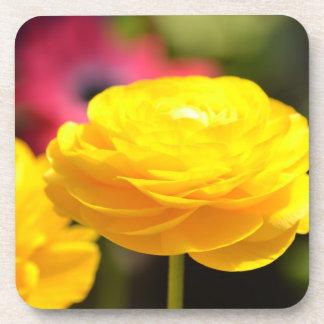 Sunny Yellow Spring Flowers Coaster