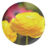 Sunny Yellow Spring Flowers Party Plates