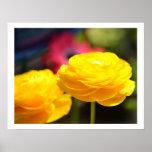 Sunny Yellow Spring Flowers Print