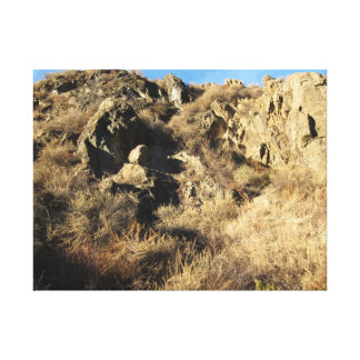 Sunol Regional Wilderness 1 Canvas Print