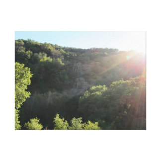 Sunol Regional Wilderness 2 Canvas Print