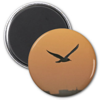 sunpainting 2 inch round magnet