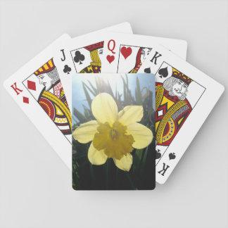 Sunray card deck
