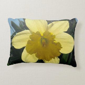 Sunray pillow