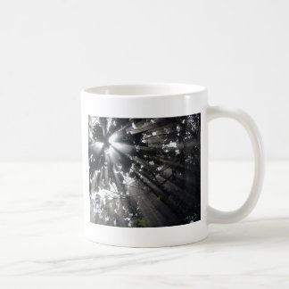 Sunrays in a forest classic white coffee mug