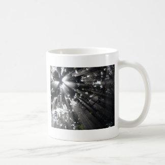 Sunrays in a forest coffee mug