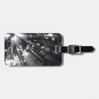Sunrays in a forest luggage tag