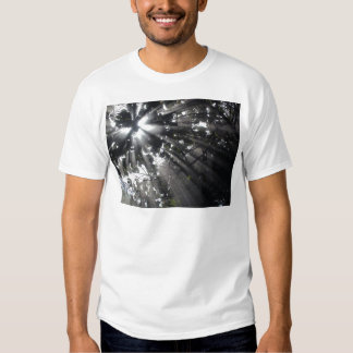 Sunrays in a forest t shirt