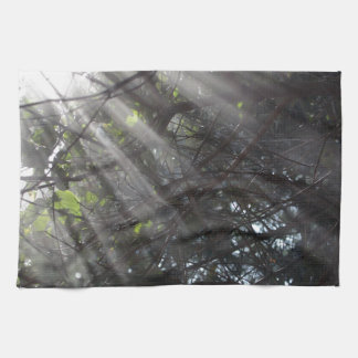 Sunrays in a misty forest hand towels
