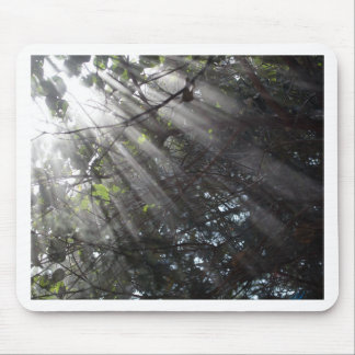 Sunrays in a misty forest mouse pad