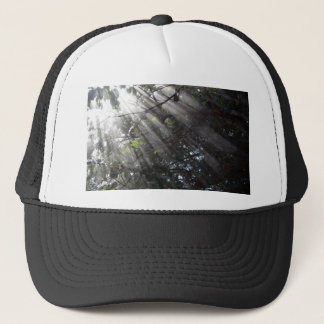 Sunrays in a misty forest trucker hat