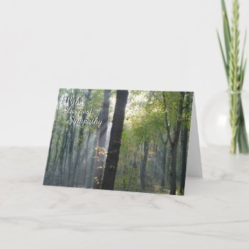 Sunrays through Trees Sympathy Greeting Card