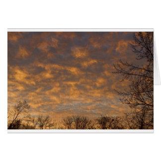 Sunrise_360.jpg Card