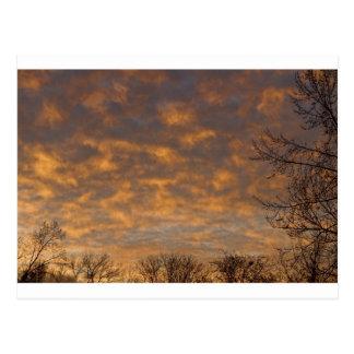 Sunrise_360.jpg Postcard
