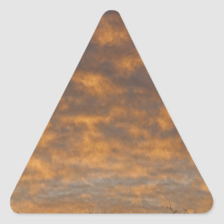 Sunrise_360.jpg Triangle Sticker
