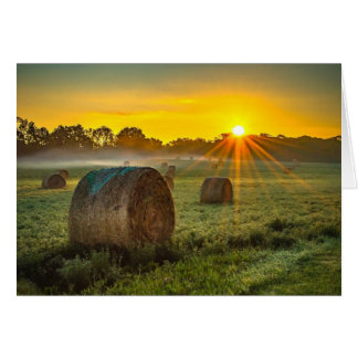 Sunrise and Bales Card