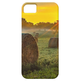 Sunrise and Bales iPhone SE/5/5s Case