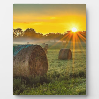 Sunrise and Bales Plaque