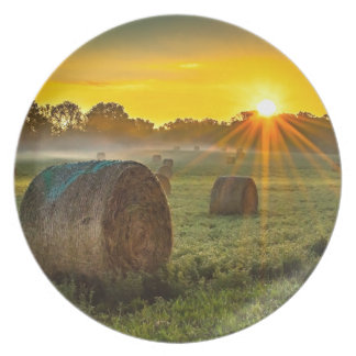Sunrise and Bales Plate