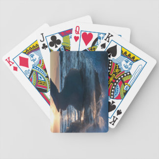 Sunrise and iceberg formation on the beach bicycle playing cards