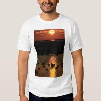 Sunrise at Blackwater National Wildlife Refuge T-Shirt