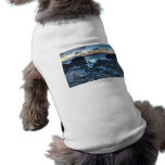 Sunrise at Dor beach Dog T Shirt