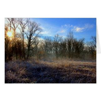 Sunrise At Huffman Lake #22 Cards