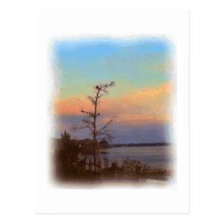 Sunrise at Joppa Flats Postcard