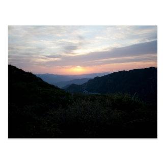 Sunrise at Penny Pines Postcard