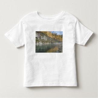 Sunrise at Roark Bluff, Steel Creek access, T-shirt