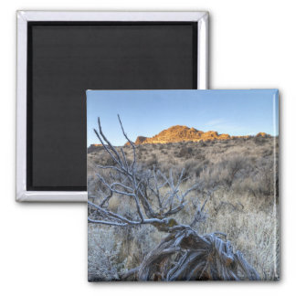 Sunrise at Squaw Creek, Owyhee County, ID Magnet