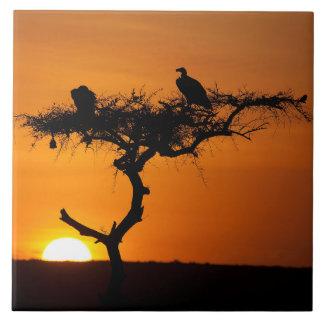 Sunrise at the Masai Mara, Kenya Tile