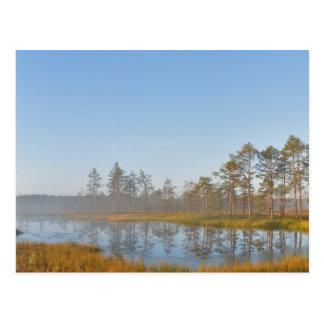 Sunrise at Viru Bog, Estonia Postcard