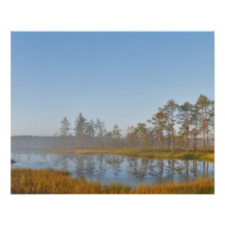 Sunrise at Viru Bog, Estonia Poster